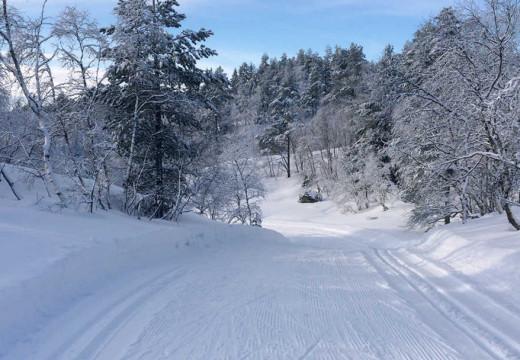 Fremdeles skiføre i kystnære skiløyper