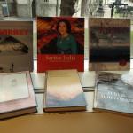 De nominerte bøkene til Sørlandets litteraturpris 2015.