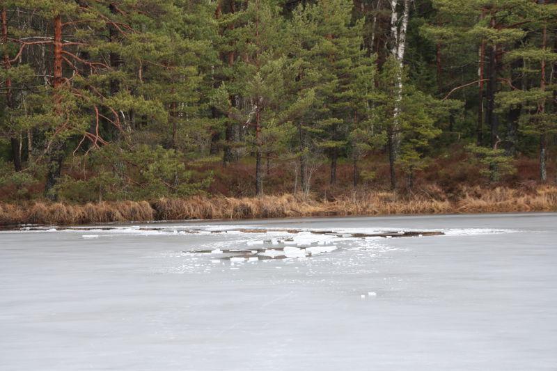 Stedet der 12-åringen gikk gjennom isen.   Foto: Ann Helen Gjerde