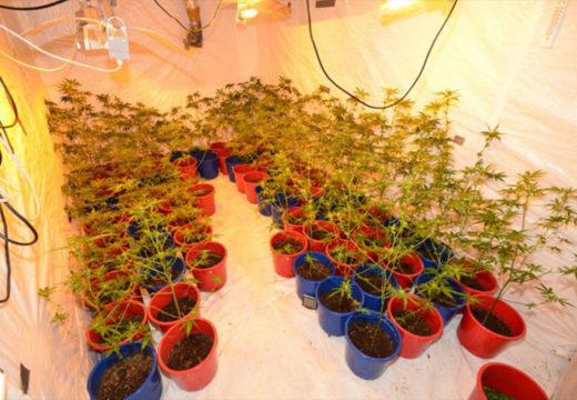Seks tiltalt for omfattende narkotikakriminalitet