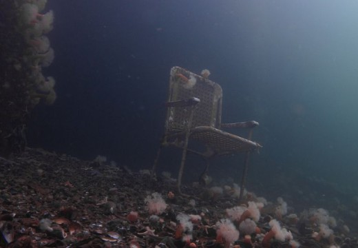 Sup og Stup kombinerer dykking med søppelrydding
