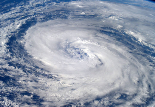 I orkanens øye